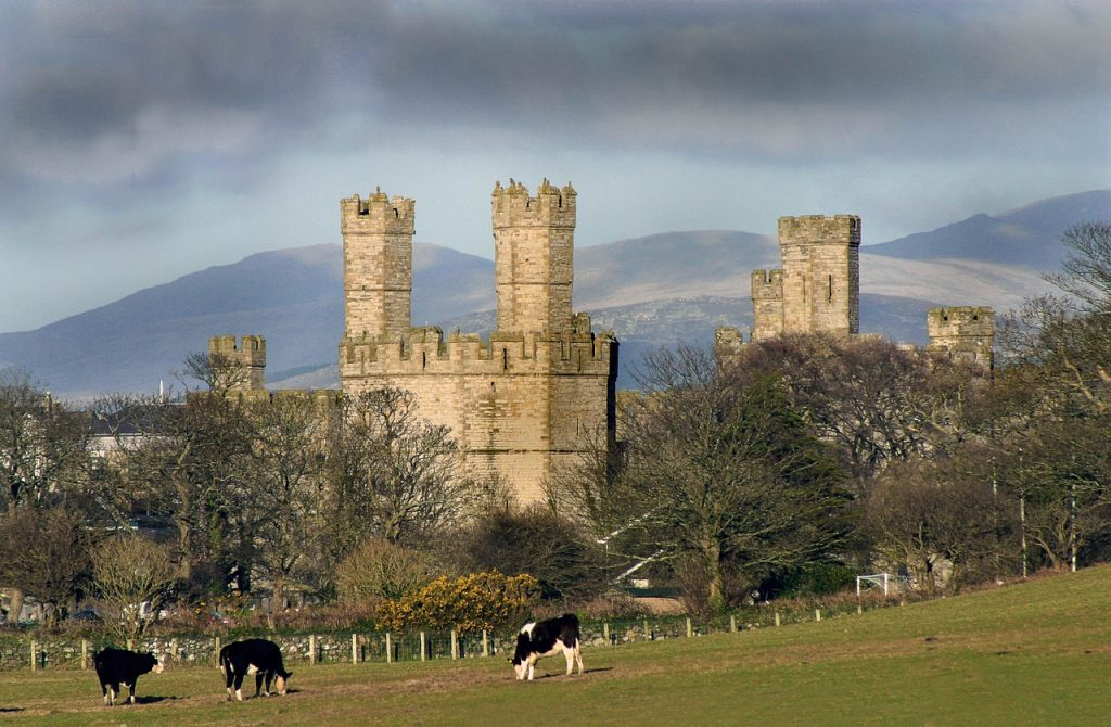 Picture of private Chauffeur tour castle North Wales